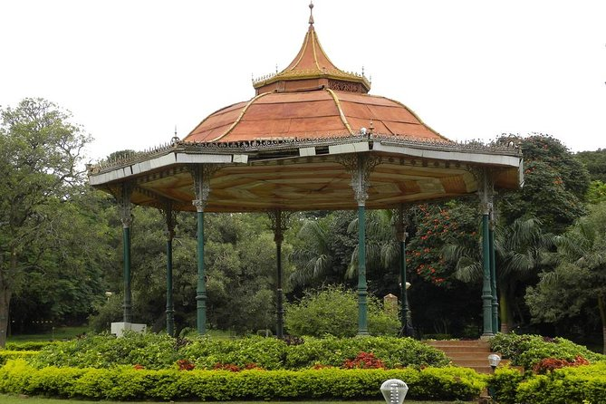 Nature Trails of Bangalore - A Guided Experience