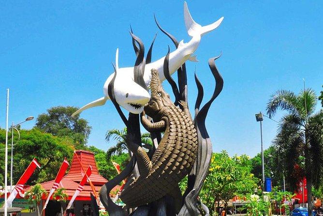 Jember Travel Surabaya