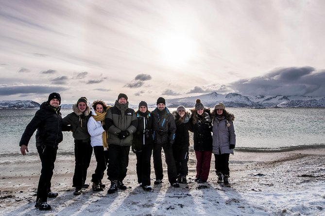 Arctic Nature Tour from Tromsø by minibus
