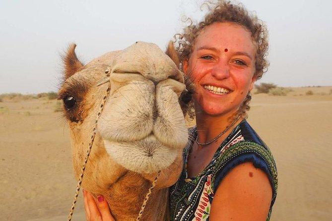 Hurghada: 3-Hour Desert Safari Quad Bike and Camel Ride