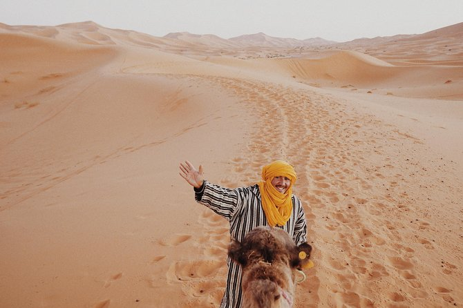 Organized excursion to the Sahara desert / Merzouga.