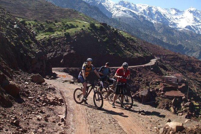 Biking Day Trip in the Atlas Mountain
