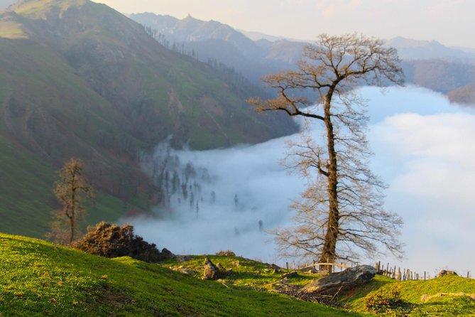 Caspian Sea Forest Trekking – 3 Days