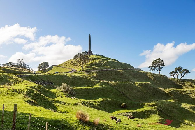 Private 4HR Auckland Tour