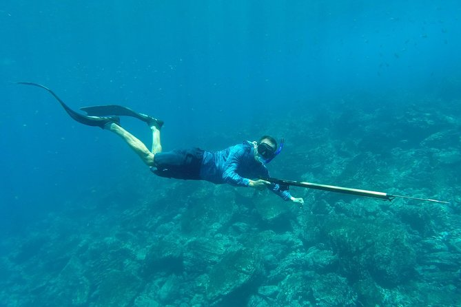 Discover Spearfishing course