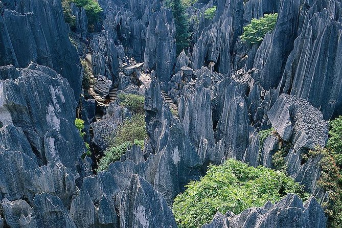 Private day trip to Stone Forest from Kunming