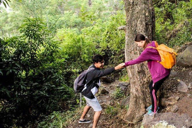 Trekking Magic Canyon Tour