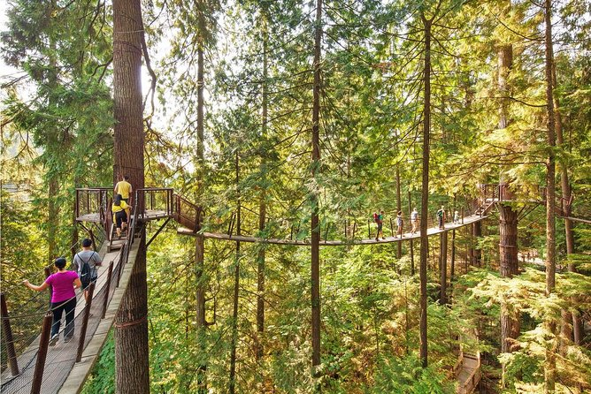 Vancouver / Capilano Suspension / Grouse Mountain / Sighseeing Tour Private