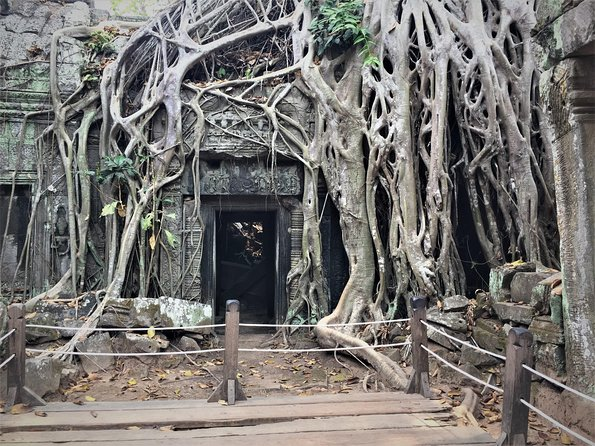 Private Angkor Wat Tour from Siem Reap photo 3