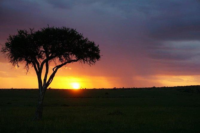 5 DAYS mt. Kenya climb