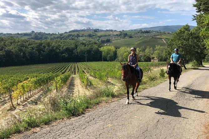 Horseback ride, lunch, Winery visit, wine tasting, visit S.Gimignano & more