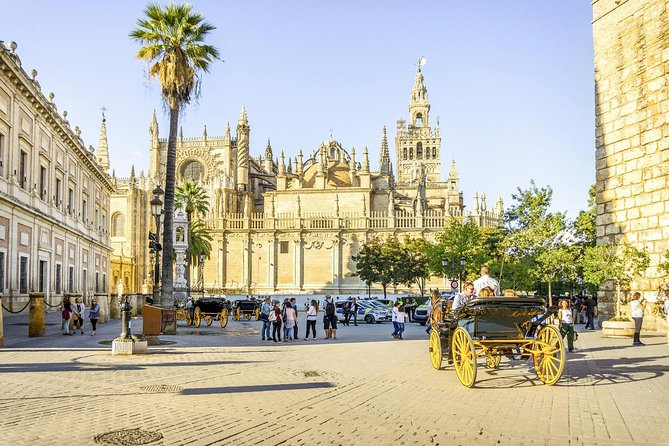Seville One Day Trip from Granada, Alcazar, Cathedral and Giralda Guided Tour.