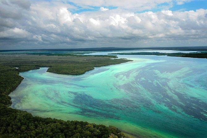 Safari en bote con fondo de cristal en el bosque de manglares de Mida Creek a través del Parque Nacional Marino Watamu