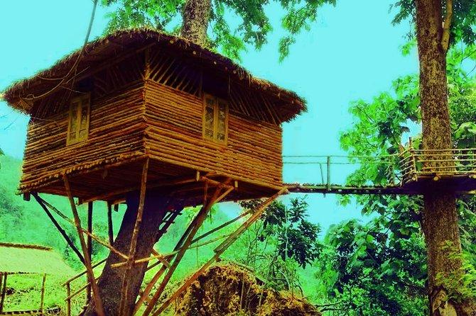 Tree House Two Days One Night (soft trek)
