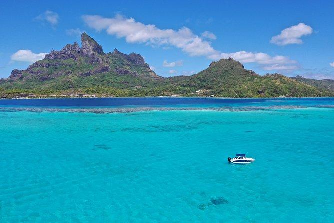 Bora Bora: Luxury Private Half Day Snorkeling Tour