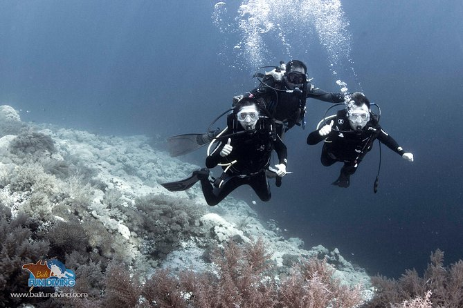 Bali Diving Tulamben shipwreck - Try Scuba - Fun Diving