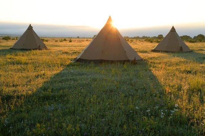 Yak Trek in Mongolia