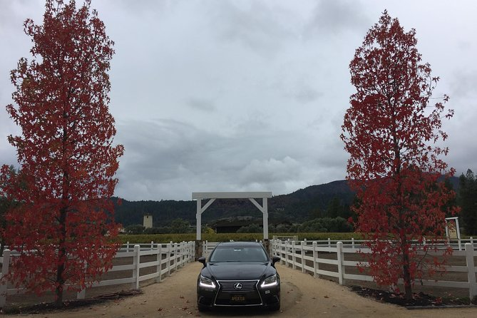 8 hr. Napa Wine Tour from San Francisco up to 3 people in a Lexus LS 460 Sedan