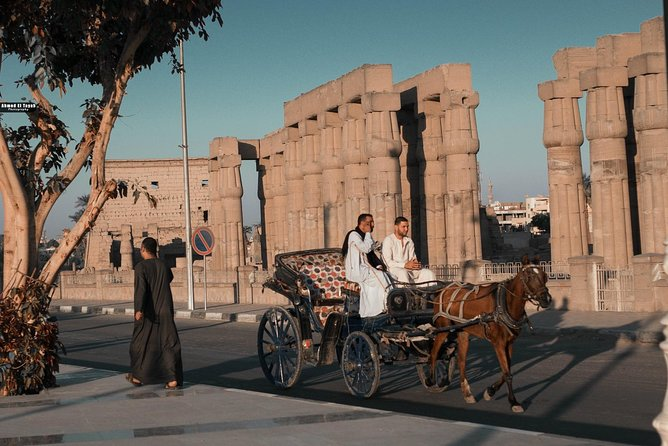 Luxor horse carriage city tour photo 20