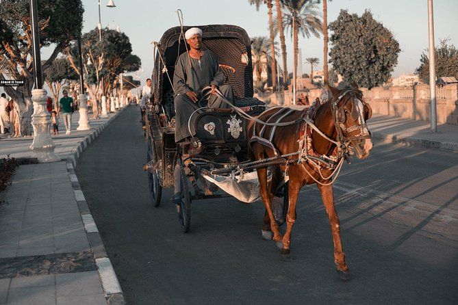 Luxor horse carriage city tour photo 1