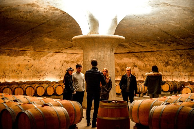 St-Emilion & Médoc Combine Day Tour including Wine Tastings and Lunch