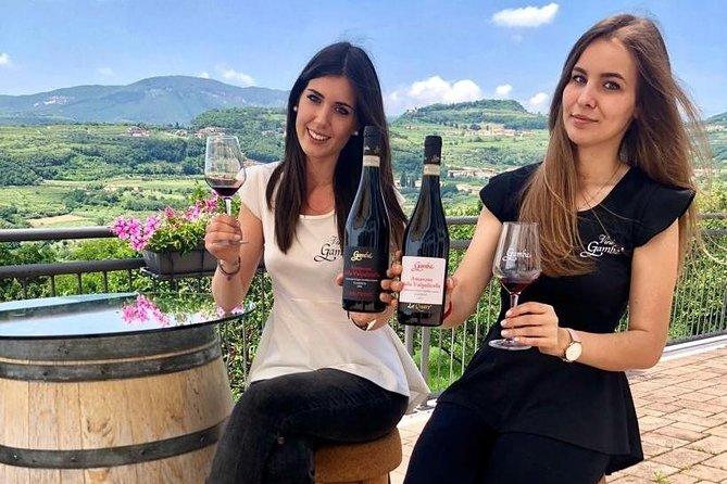 Privat Amarone Wine Tasting Tour från Milano med tåg