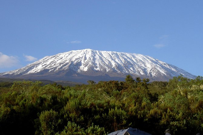 Mt. Kilimanjaro short trekk photo 5