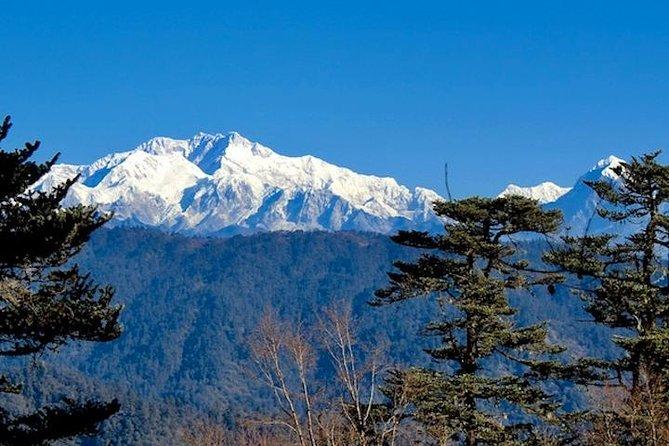 Darjeeling Tonglu - Tumling Day Trek
