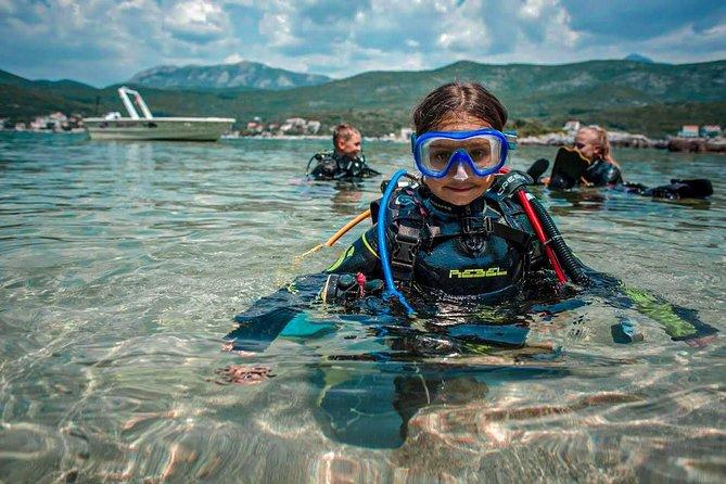 Introducing dive