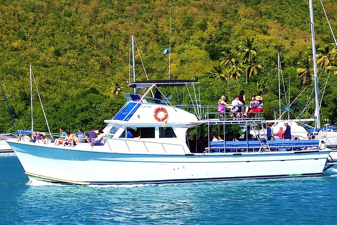 Whale and Dolphin Watching Cruise in St Lucia