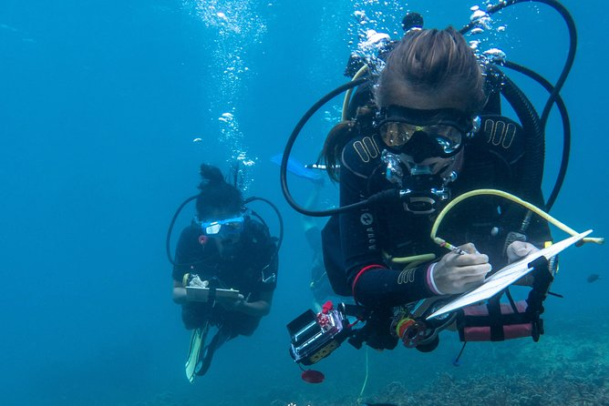 Discover Conservation Diving