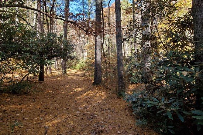 North Carolina Arboretum Running Tour in Asheville