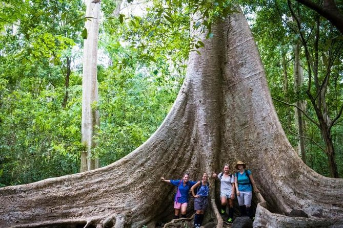 2-day Trekking And Discovering Nam Cat Tien National Park