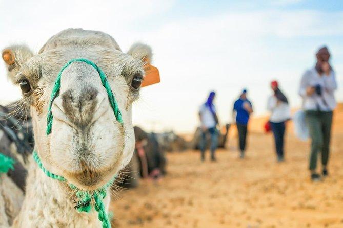 3 Days Desert Tour From Marrakech To Merzouga Dunes