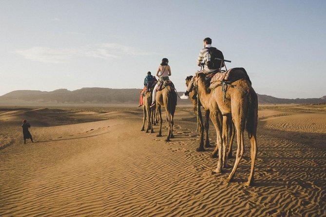 2-Day Desert Safari to Zagora from Marrakech
