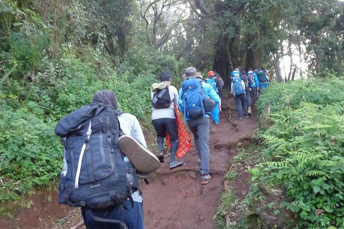 1 Day Kilimanjaro trek via Marangu Route