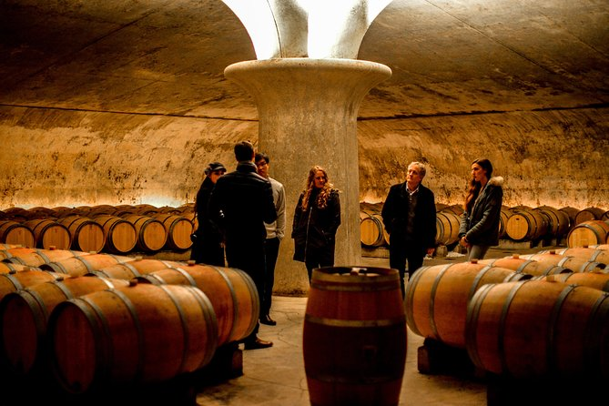 Half Day Morning Wine Tour to Famous St-Emilion Region with Extra Tastings photo 12