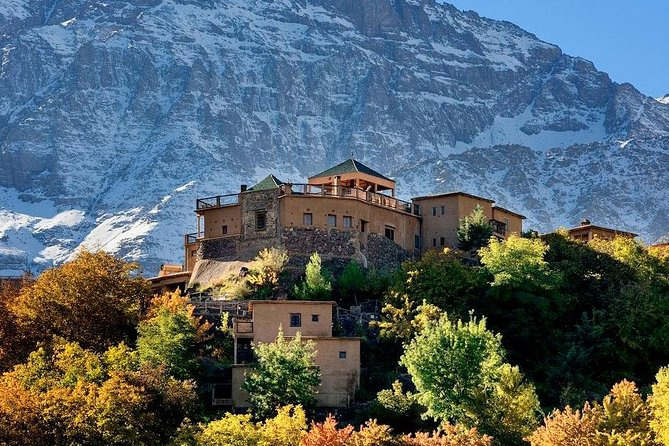 Day trip to atlas Mountains And 3 Valley & Berber Villages with Camel Ride