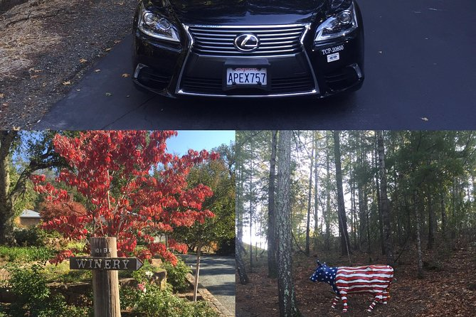 6-Hours Private Lexus Sedan(up to 3 passengers) Napa Valley Wine Country Tour