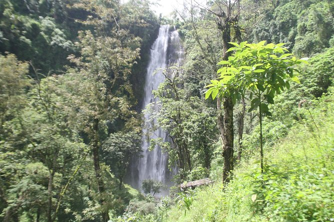 Marangu cultural tours