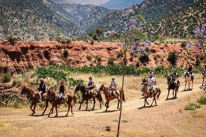 Horse Ride at the Marrakech Desert