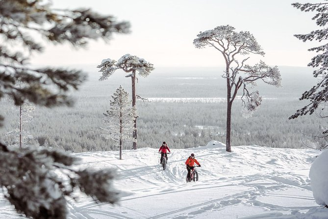 Electric Fatbike Tour in the Pyhä-Luosto National Park