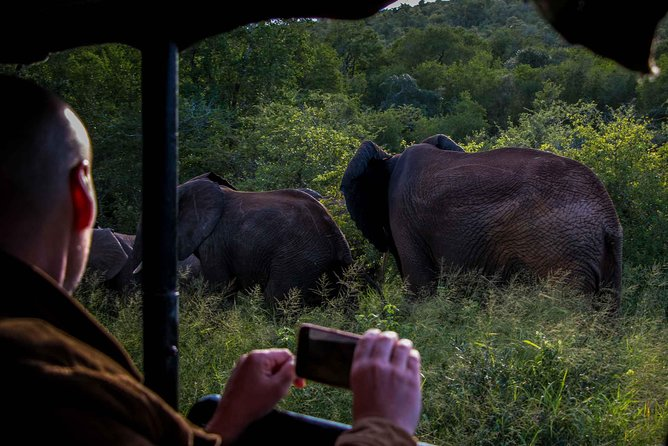 iSimangaliso Wetland Park, Night Drive Safari photo 1