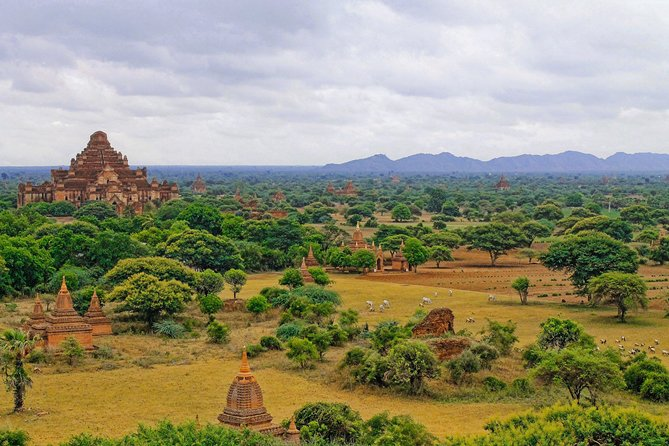 UNESCO World Heritage Bagan: Archaeological Temples by E-Bike photo 3