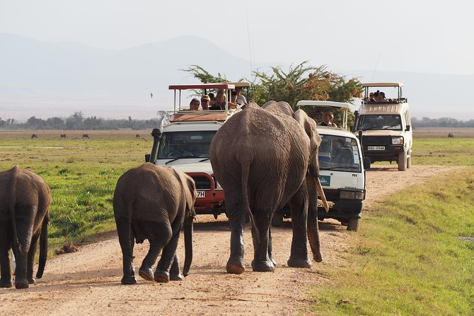 Amboseli National Park Guided Full Day Tour photo 11