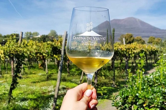 Tour of Pompeii with tour guide plus wine testing and lunch in a winery Vesuvius