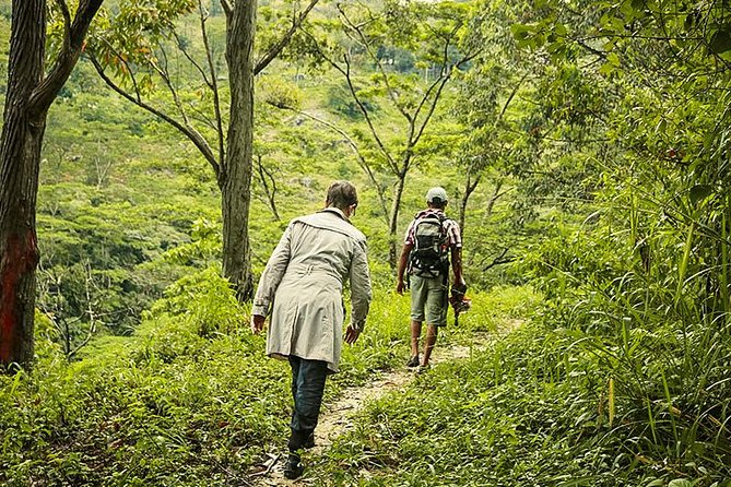 Heeloya Village Trek from Kandy