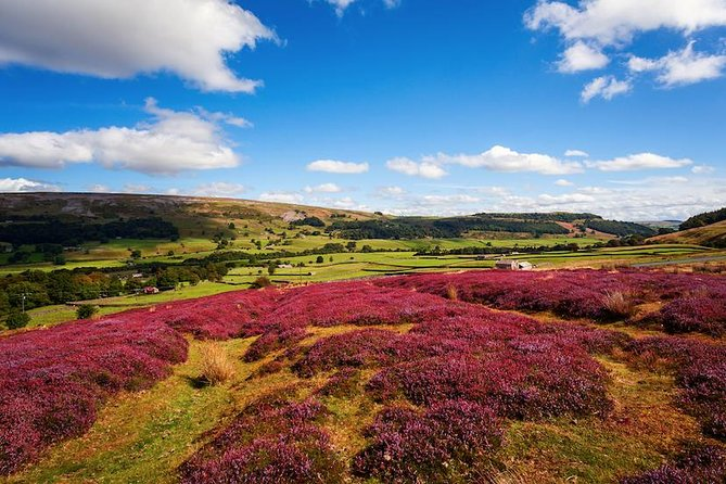 Private Tour - Yorkshire Dales Day Trip from Leeds