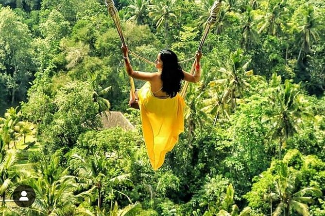 Private tour : ubud monkey forest - jungle swing - insta spots - free wifi
