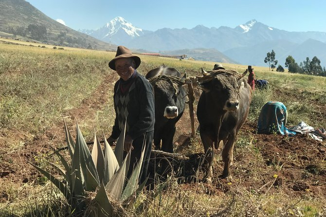 Sacred Valley, Salt Mines and Moray 1 Day